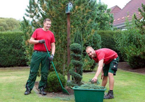 Garten- und Landschaftsbau Pflege